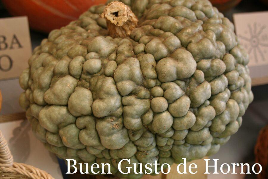 Buen Gusto de Horno (ķirbju sēklas, 5 gab.)