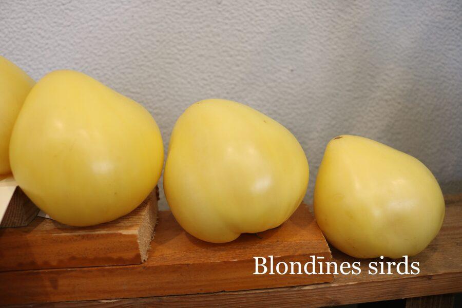 Blondīnes sirds (tomātus sēklas, 15 gab.)