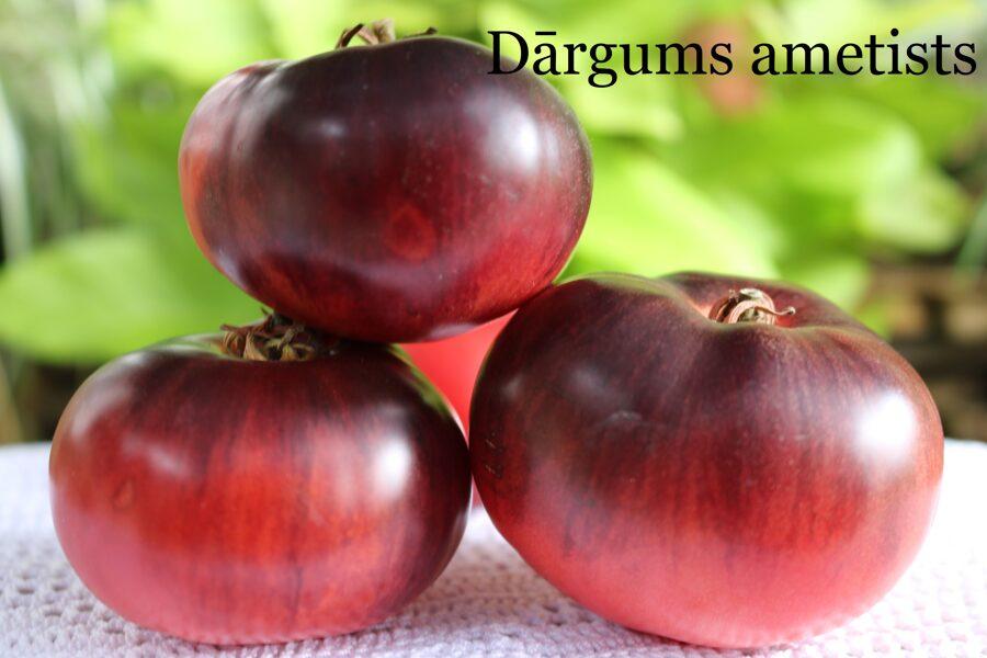 Dārgums ametists (tomātu sēklas, 15 gab.)