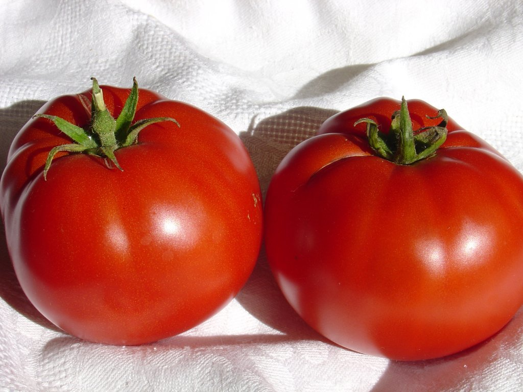 Iecienītā Delišes (tomātu sēklas, 15 gab.)