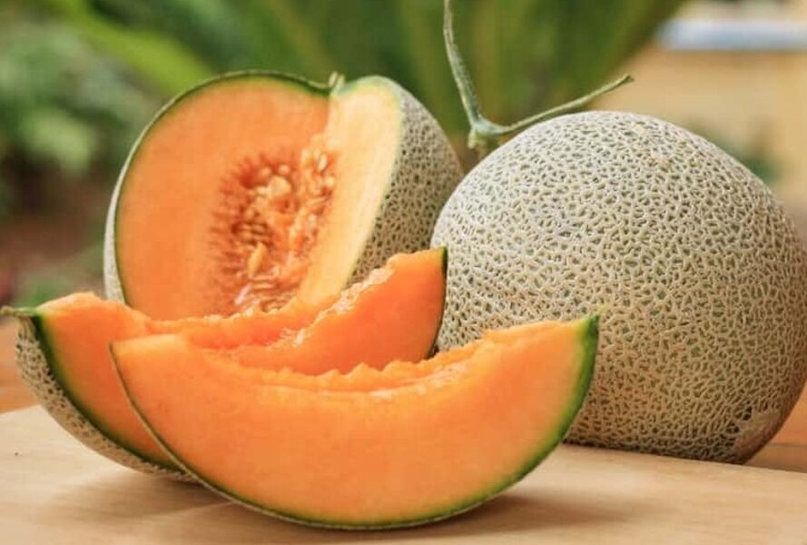Melone 'Hert of Gold'