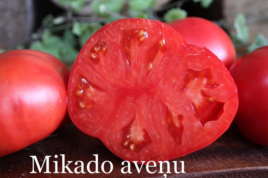 Mikado aveņu (stāds bez podiņa)