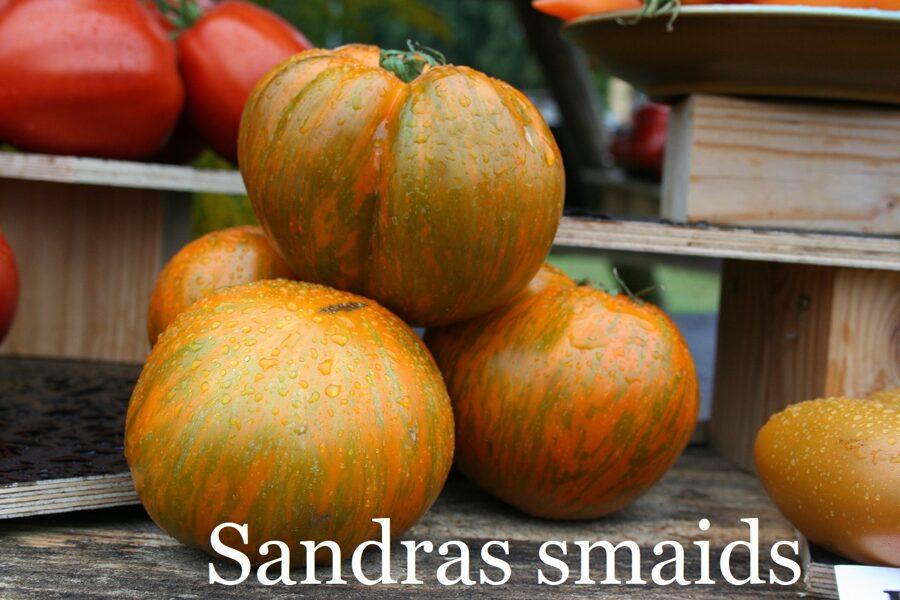 Sandras smaids (stāds bez podiņa)