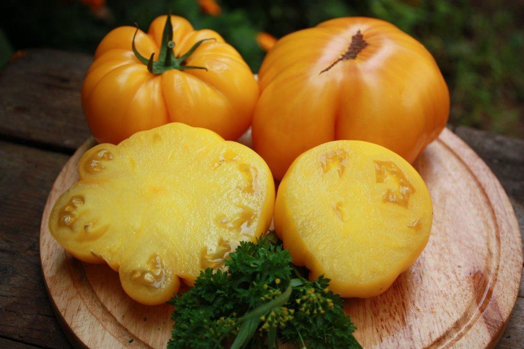 Svari (tomātu sēklas, 15 gab.)